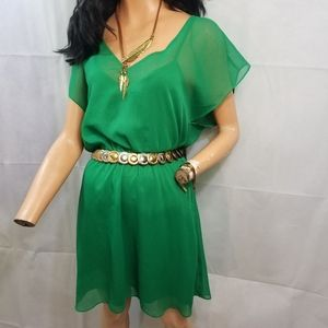 Kelly green Express Dress Medium